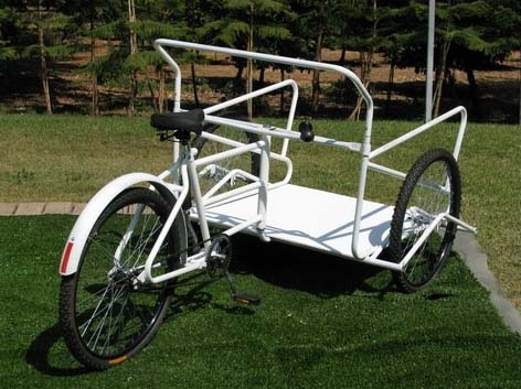 מפוארת פורום אופניים - כללי - תלת אופן לשטח? DZ-19